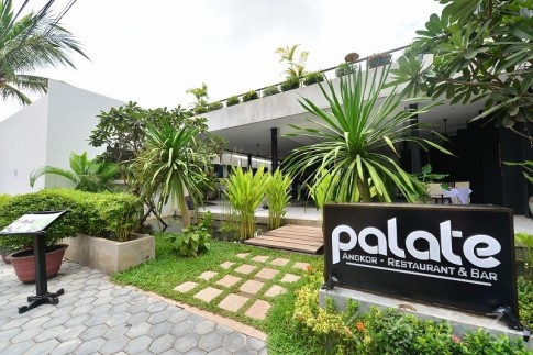 Palate (3)